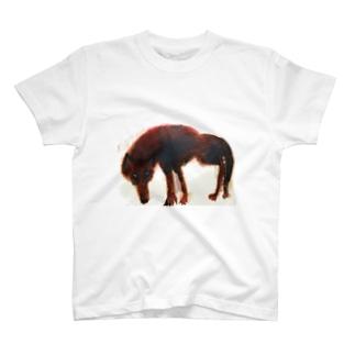 野生の狼 T-shirts