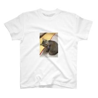マルカワ T-shirts
