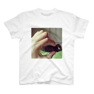 掴む T-shirts