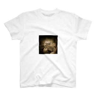 すなねずみ T-shirts