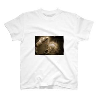 すなねずみ2 T-shirts