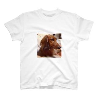 \(//∇//)\ T-shirts