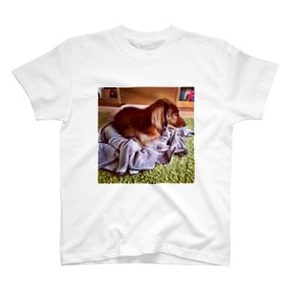 巣ごもりフォルテ。 T-shirts