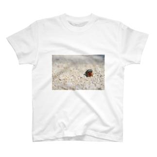 YADOKARI  T-shirts