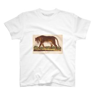 『博物学の普遍的システム』 T-shirts