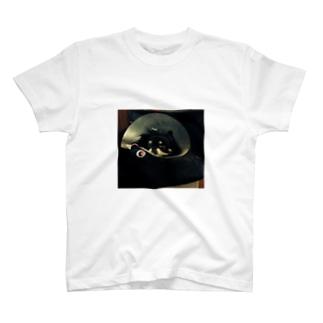 さん太郎の散歩行きたいやつ T-shirts