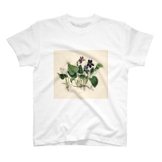 スミレ T-shirts