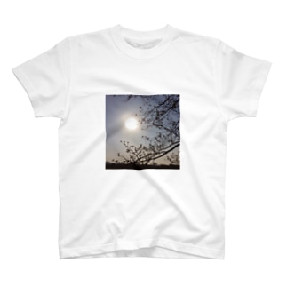 FlowerLIFE T-shirts
