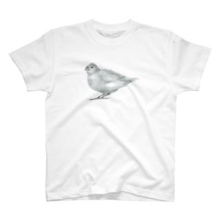 文鳥 T-shirts