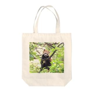 Lesser panda Tote bags