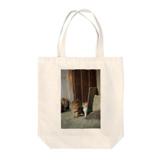 猫写真家 森永健一 Feel So High shopのキス Tote bags