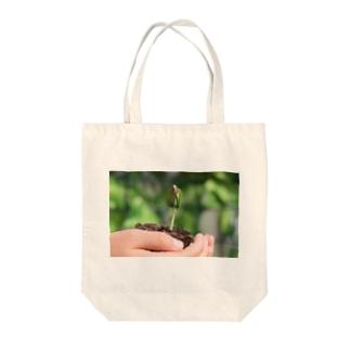 ひまわりの芽 Tote bags