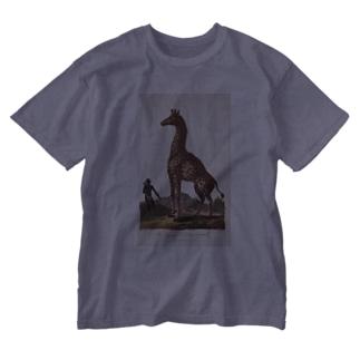 『博物学の普遍的システム』 Washed T-shirts