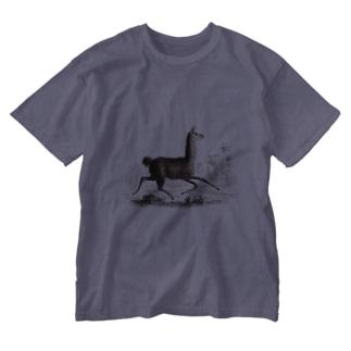 J. Jeffery Print Galleryの『自然科学史』 Washed T-shirts