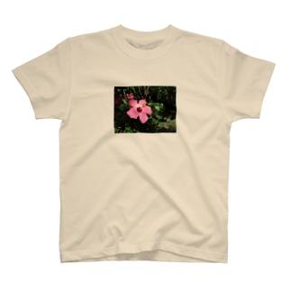 ハイビスカス T-shirts
