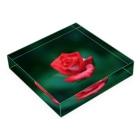 M.F.Photoの赤いバラ Acrylic Blockの平置き