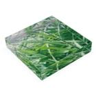 meronsodabonbonの夏草がゆれる Acrylic Blockの平置き