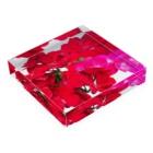 lisz-marketのゼラニウムさん Acrylic Blockの平置き
