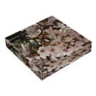 hiroki-naraの桜 サクラ cherry blossom DATA_P_152 春 spring Acrylic Blockの平置き