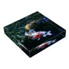 Takashi MUKAIのBlock-Carp01 Acrylic Blockの平置き