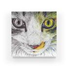 ボールペン画と可愛い動物のボールペン画/カラーボールペン画 Acrylic Block