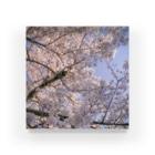 N dotのPT004 Blooming Breeze Acrylic Block