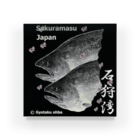 G-HERRING(鰊;鮭;公魚;Tenkara;SALMON)のサクラマス! 石狩湾(桜鱒;SAKURAMASU;桜)あらゆる生命たちへ感謝をささげます。 Acrylic Block