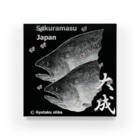 G-HERRING(鰊;鮭;公魚;Tenkara;SALMON)のサクラマス! 大成(桜鱒;SAKURAMASU;桜)あらゆる生命たちへ感謝をささげます。 Acrylic Block