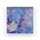 marihoの💠 Acrylic Block