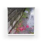 music9-uの雨の日【濃】 Acrylic Block
