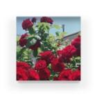 namaste99の薔薇の花 Acrylic Block