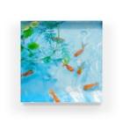 ウォーターブロックの金魚 Acrylic Block