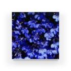 駿河屋ガルスのブルーブルー Acrylic Block