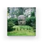 FUCHSGOLDのメキシコ:オルメカの巨石人頭像 Mexico: Olmec colossal head Acrylic Block