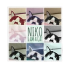 高橋わたがしのNIKO I am a cat Bandana
