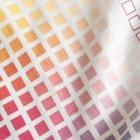 きゃぴあてれび♥ショップのハッピーアニマル(初期限定デザイン キャバリア・インコ・犬・鳥) Big T-shirtsのプリント