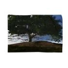 甕邨(ようそん)の丘と木 Blankets