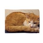 あかめ@猫カフェの永ちゃん代表 Blankets