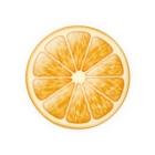 トマトカゲの輪切りオレンジのワンポイント Badges