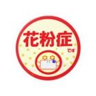 rioka24ki10の花粉症  Badges