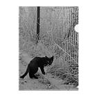 トロワ イラスト&写真館の哀愁漂う黒猫 Clear File Folder