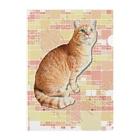 ともの茶トラにゃんこ Gingercat 文字入り Clear File Folder