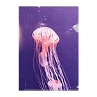 MedicalKUNのクラゲ🌈水族館🐠🐬🌊ほっこり🦄🐟🌈くらげ Clear File Folder