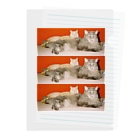 kairi nagashimaのmycats Clear File Folder