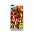Dreamscapeの秋ですよ~! Clear smartphone cases