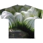 aomatuのハオルチア オブツーサ系1「ハオルチア クーペリー トルンカタ MBB386」 Full graphic T-shirtsの背面