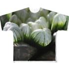aomatuのハオルチア オブツーサ系1「ハオルチア クーペリー トルンカタ MBB386」 Full graphic T-shirts
