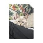 SHOP_KAGENEKOの呆れ猫 Notes