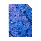 2641の紫陽花 Notebook