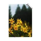 hiroki-naraの菊芋と樹木 DATA_P_139 tree Notes